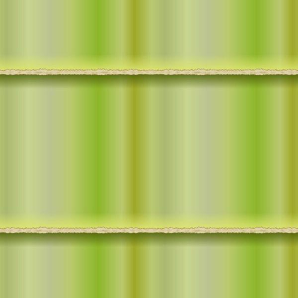 Bamboo 26