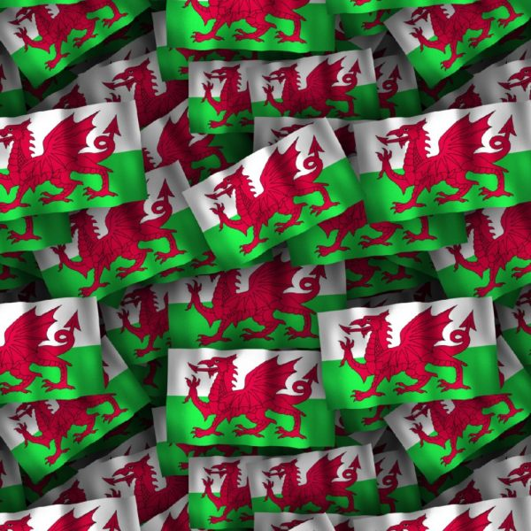 Welsh Flag 23