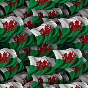 Welsh Flag 22