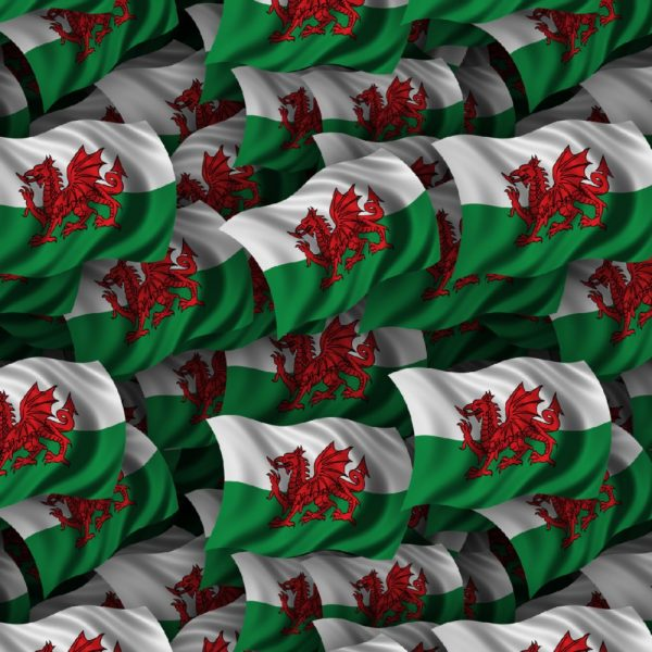 Welsh Flag 22