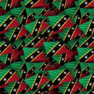Saint Kitts & Nevis Flag