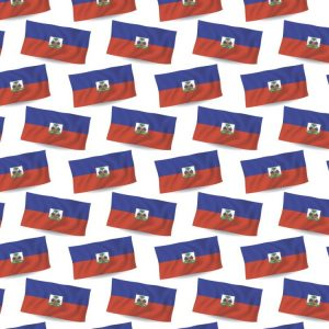 Haitian Flag 23