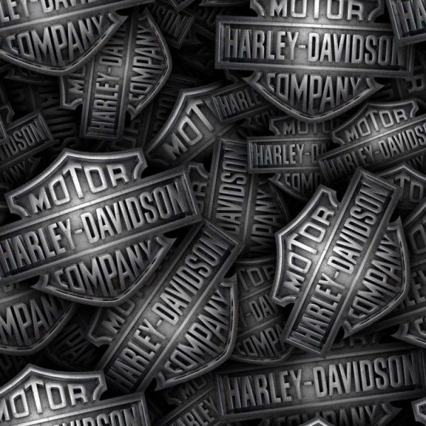 Harley Cast Iron 23
