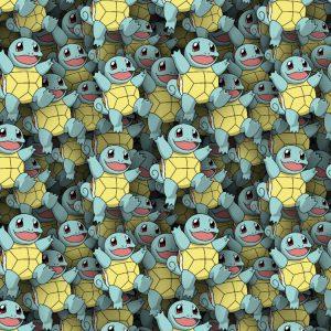 Pokemon Squirtle 25