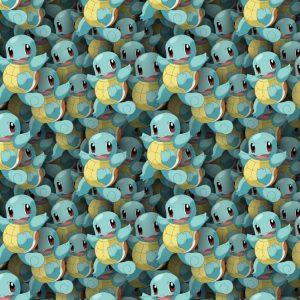 Pokemon Squirtle 24