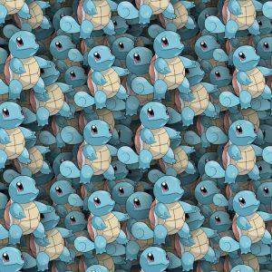 Pokemon Squirtle 23