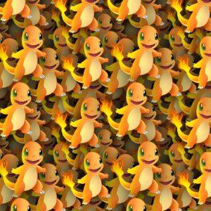 Pokemon Charmander 22
