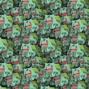 Pokemon Bulbasaur 24