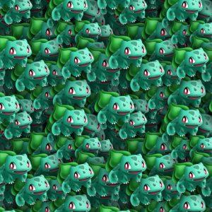 Pokemon Bulbasaur 22