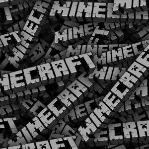 Minecraft 23