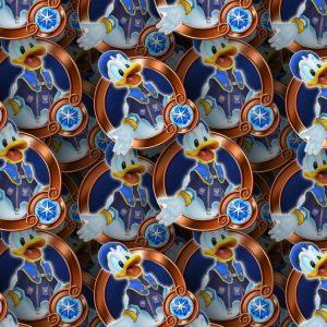 Kingdom Hearts Donald 23