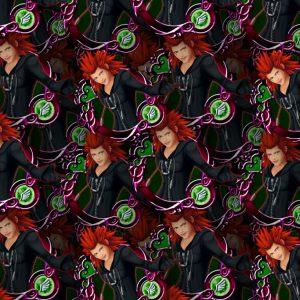 Kingdom Hearts Axel 23