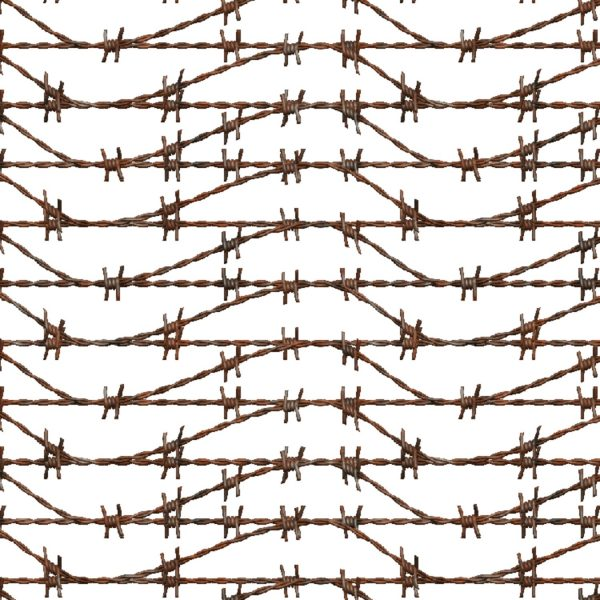 Barbed Wire 25