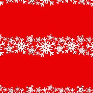 Snowflakes 29