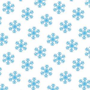 Snowflakes 24