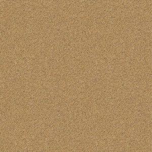 Sand 22