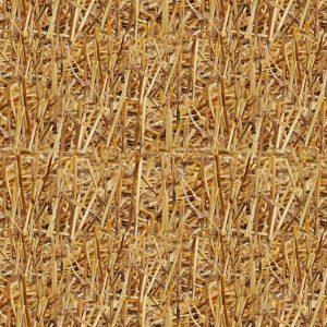 Cut Straw
