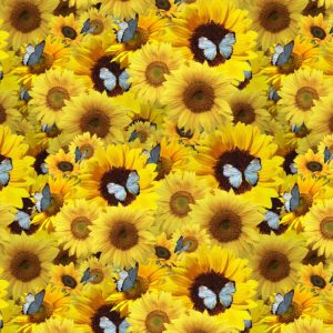 Sunflowers and Butterflies 22