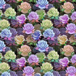 Rose Crazy 23
