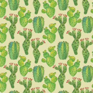 Plastic Cactus