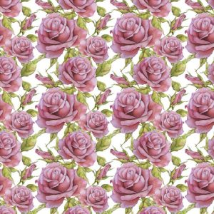 Pink Roses 25