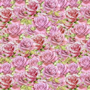 Pink Roses 23