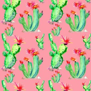 Cactus Watercolor 26