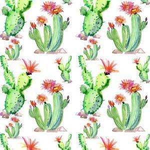 Cactus Watercolor 25