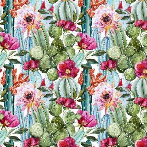 Cactus Watercolor 24