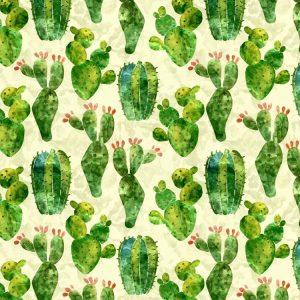 Cactus Watercolor 23