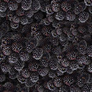 Blackberries 22