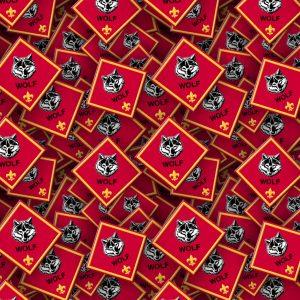 Boy Scouts Badges 27