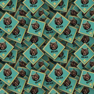 Boy Scouts Badges 24