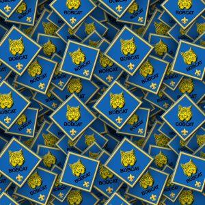 Boy Scouts Badges 23