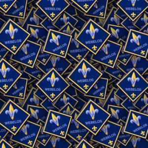 Boy Scouts Badges 22