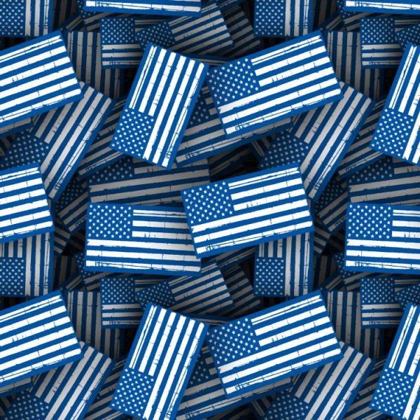White and Blue Thin Line Flag
