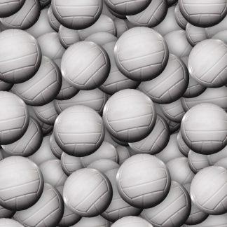 Volleyballs 22