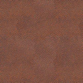 Football Leather 22