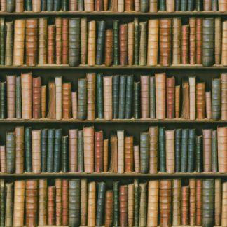 BookShelf 22