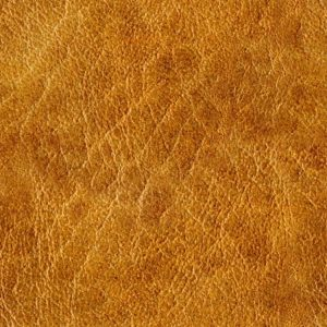 Rough Leather