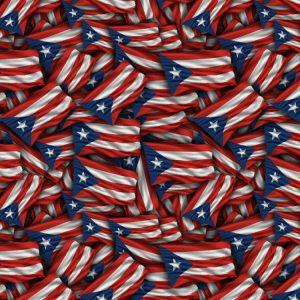 Puerto Rico US Territory Flag