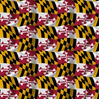 Maryland Flag 22