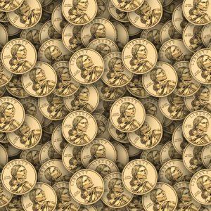 Sacagawea Dollar 22