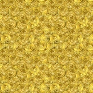 Gold Coins 24