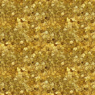 Gold Coins 22