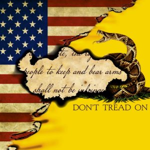 US Gadsden Flag 23 11x16