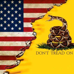 US Gadsden Flag 22 11x16