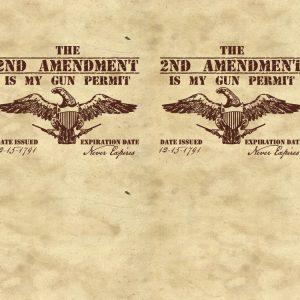 Second Amendment Gun Permit 11x16