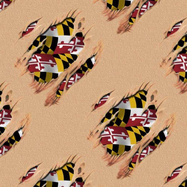 Patriot Under the Skin Maryland