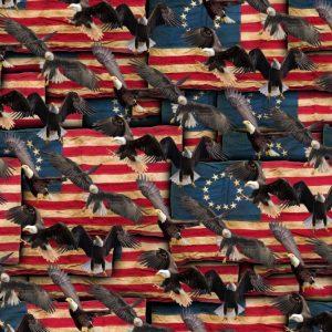 Eagle Flag 26